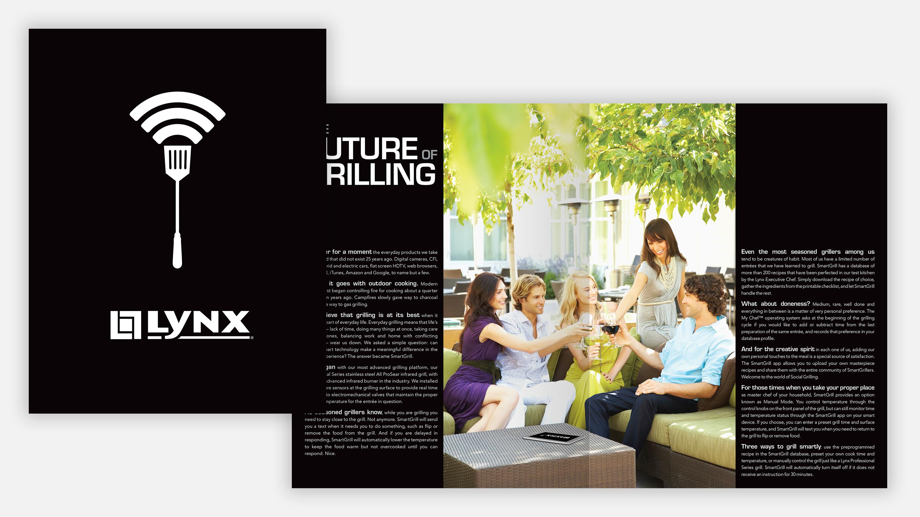 lynx brand brochure