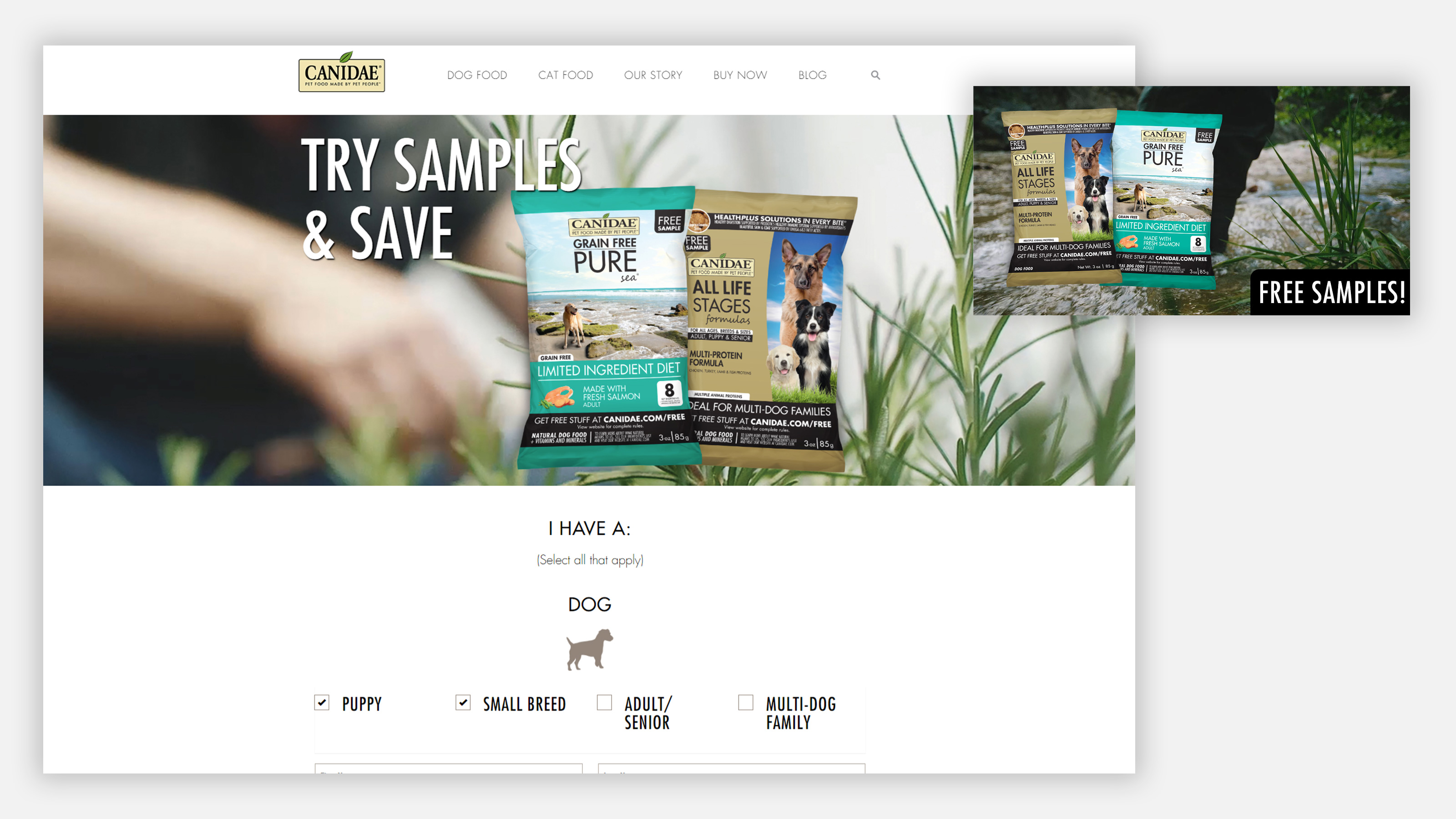 canidae sample ads and sample landing page