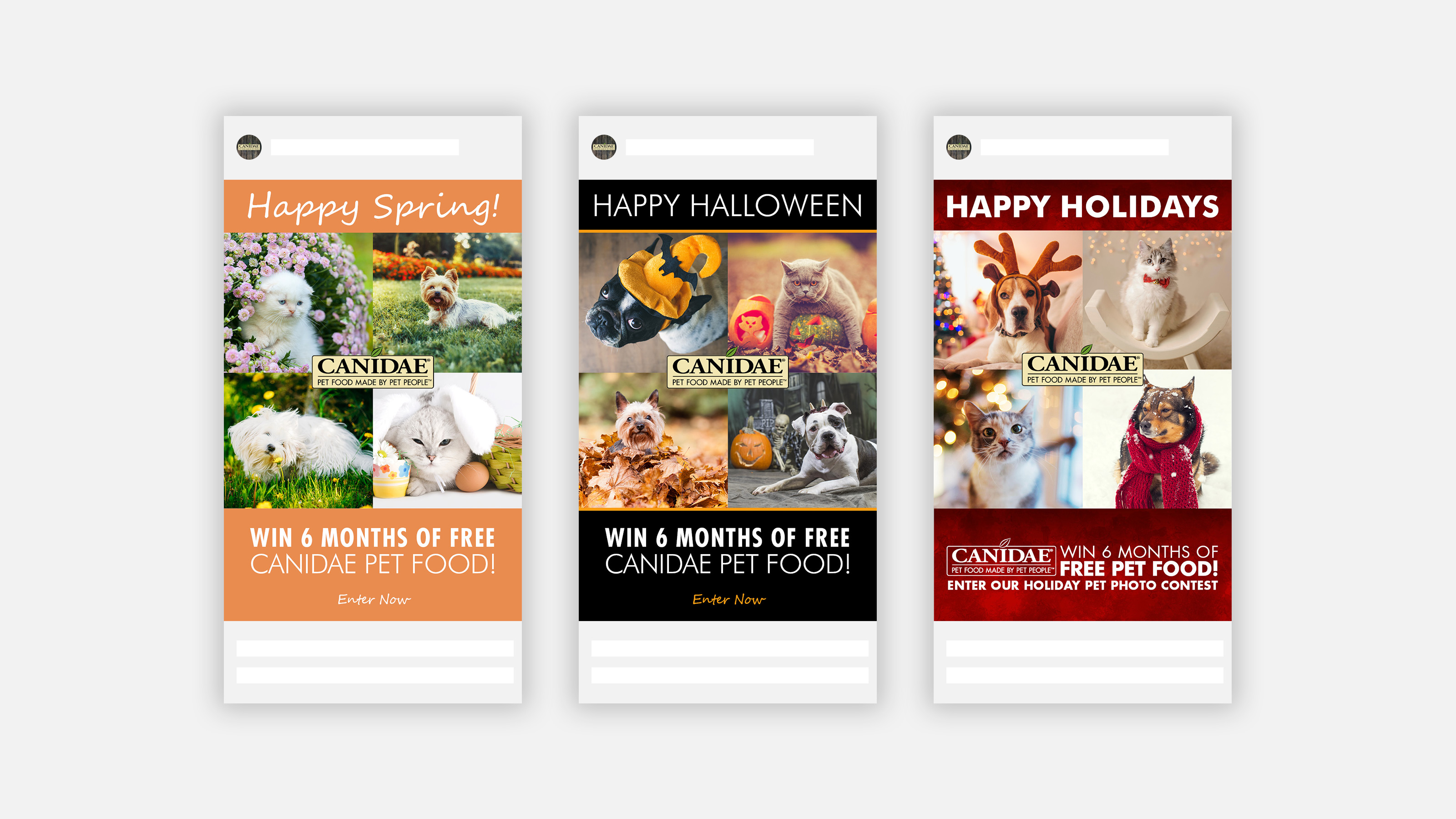 CANIDAE Pet Food Instagram contest images