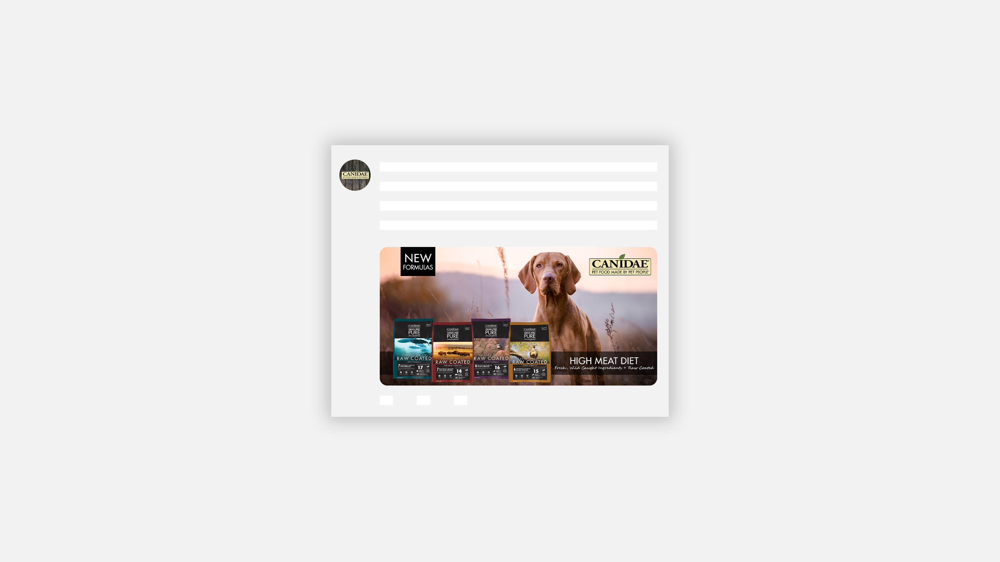 CANIDAE Pet Food Ancestral social media ad for Twitter