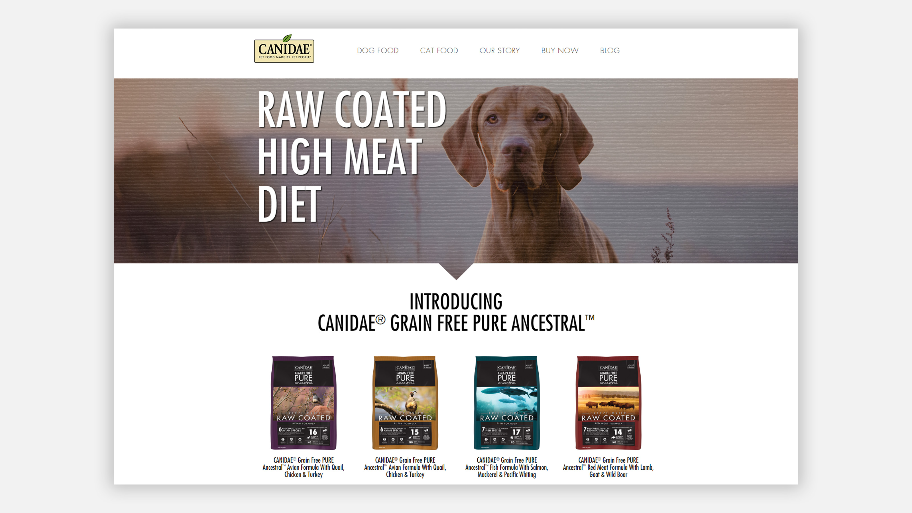 CANIDAE Pet Food Ancestral brand landing page