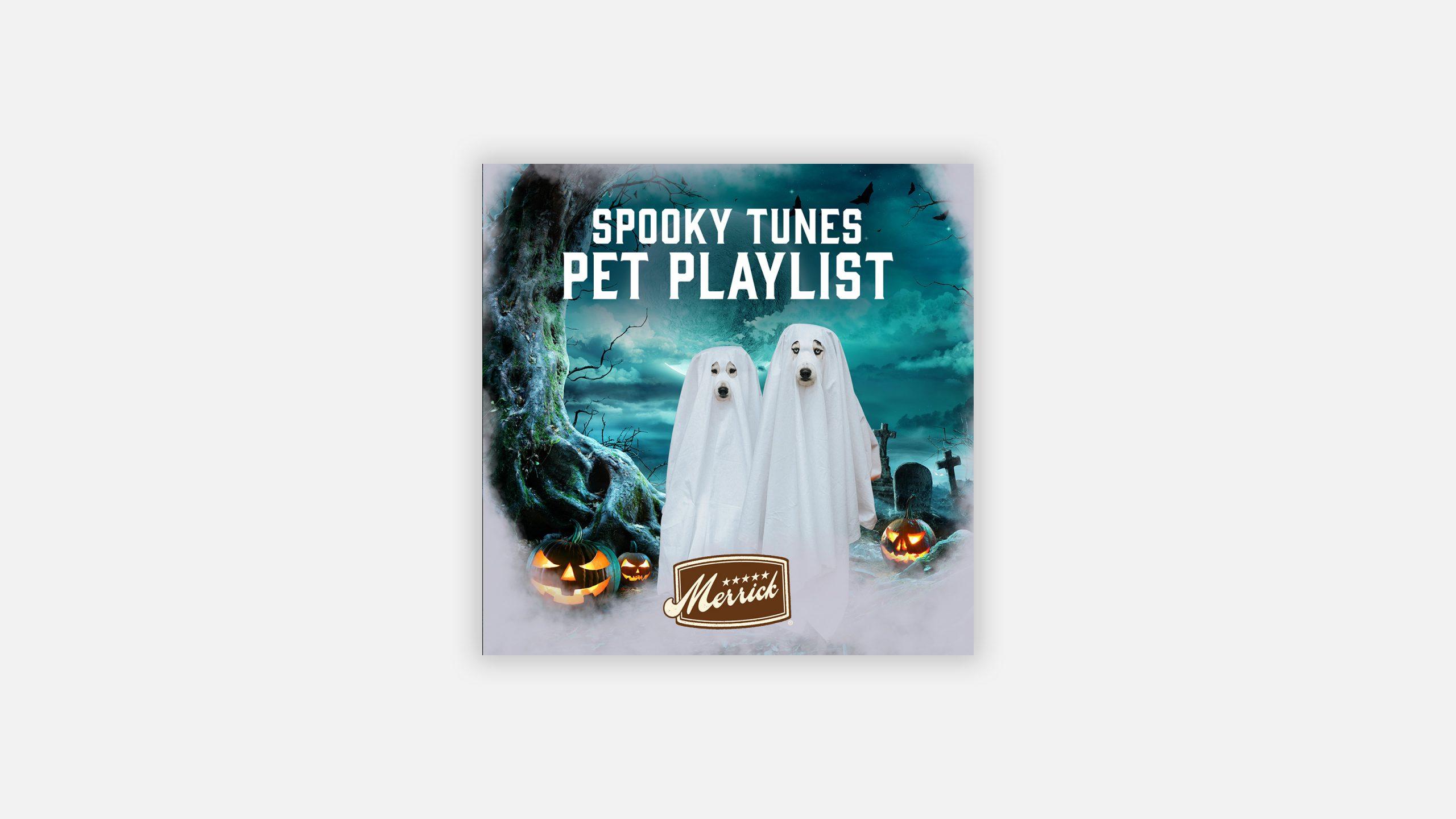 Merrick Spotify Playlist